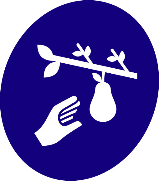 Cueillette Solidaire