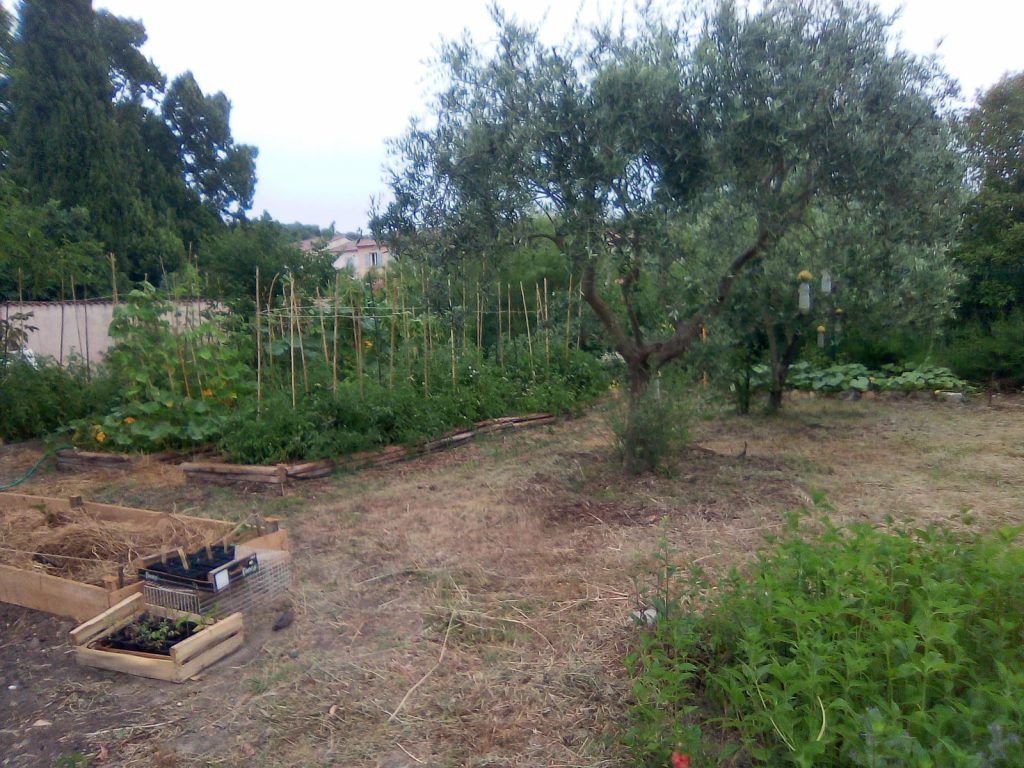 Jardin permacole Lorgues